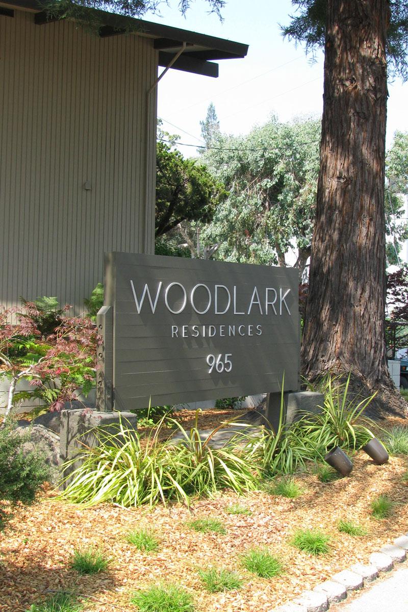 woodlark2
